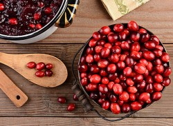 Importance of cranberry for women's health