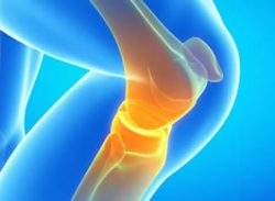 What is glucosamine and why is it important for joint health?