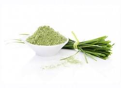 Benefits of wheatgrass
