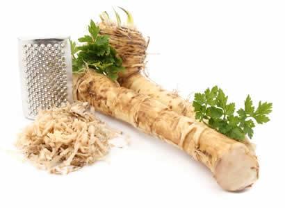 Benefits of Triple Strength Garlic + C, Horseradish, Fenugreek and Marshmallow